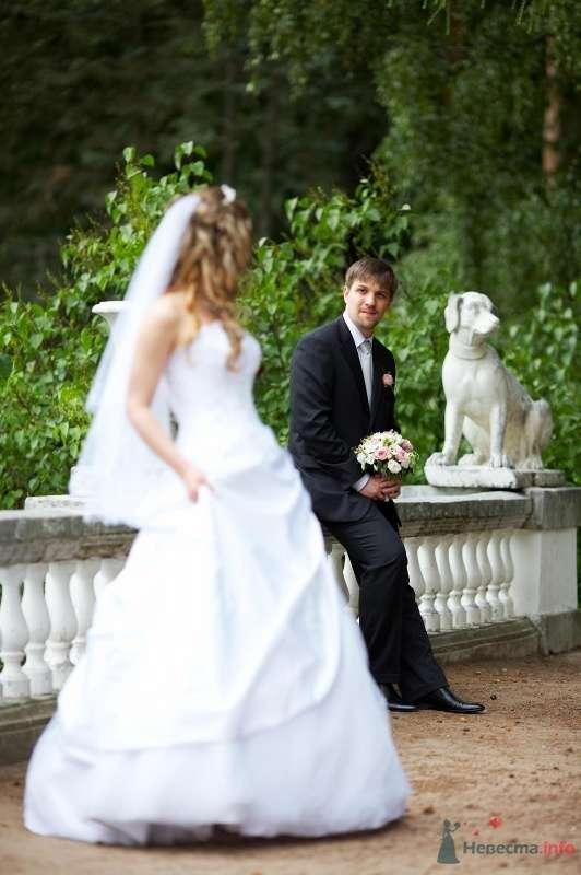Фото 62809 в коллекции Наша самая счастливая свадьба )) - Anastasiya