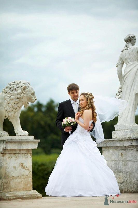 Фото 62810 в коллекции Наша самая счастливая свадьба )) - Anastasiya