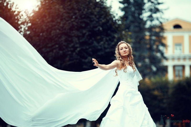 Фото 62825 в коллекции Наша самая счастливая свадьба )) - Anastasiya