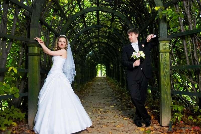 Фото 63015 в коллекции Наша самая счастливая свадьба )) - Anastasiya