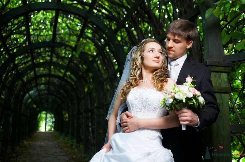 Жених и невеста, прислонившись друг к другу, стоят на фоне деревьев зелени - фото 63033 Anastasiya