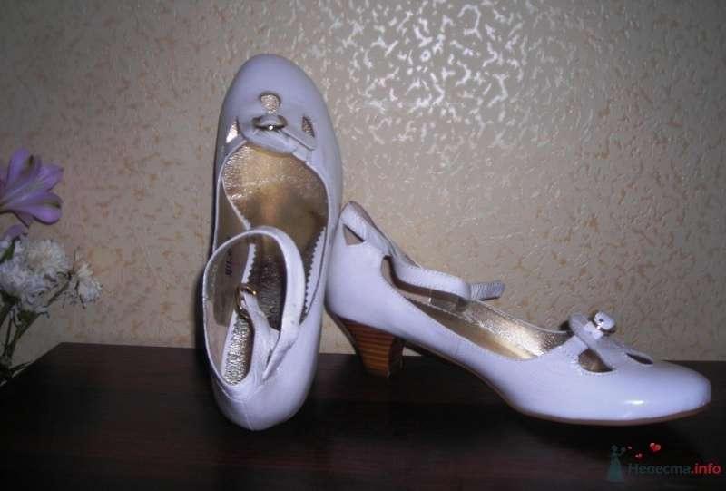 "мои ""не золушкины"" туфельки - фото 36610 sofiya"