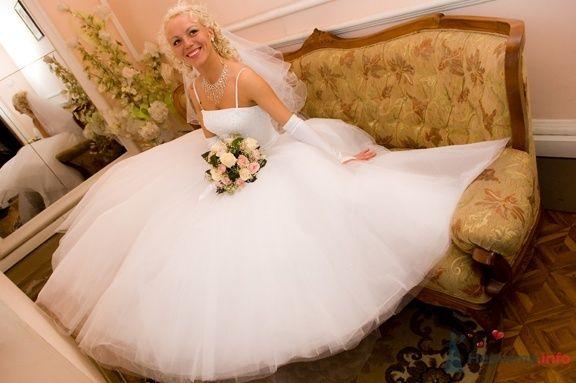 Фото 60730 в коллекции моя свадьба - Багира