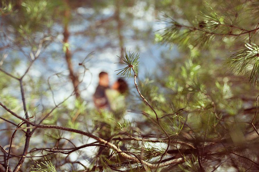 Фото 3400553 в коллекции портфолио - Фотограф Галина Травина