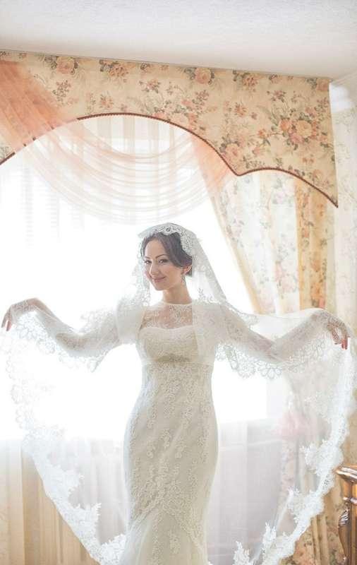 Фото 5706991 в коллекции WEDDING - Фотограф Алим Кажаров