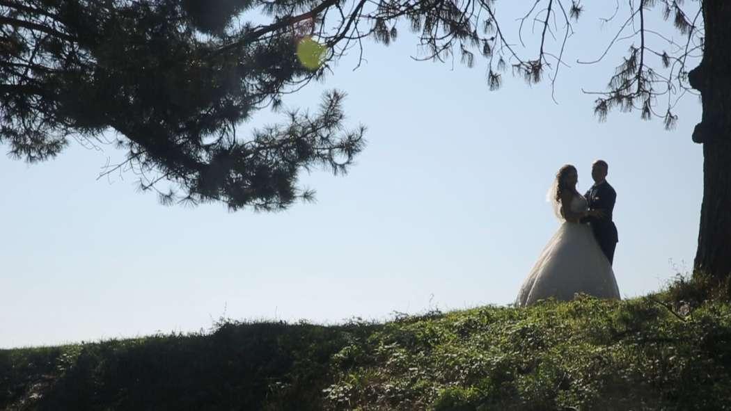 Фото 10987680 в коллекции WEDDING - Фотограф Алим Кажаров