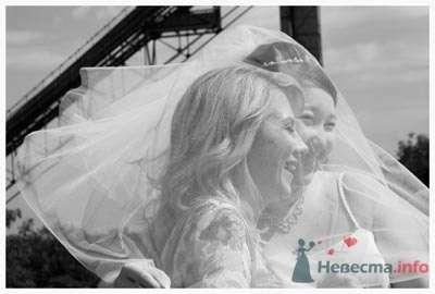 Фото 23025 в коллекции Свадьбы  - Zoto