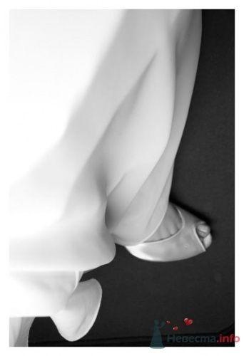 Фото 23033 в коллекции Свадьбы  - Zoto