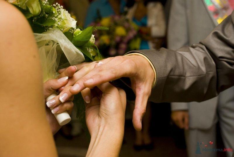 Фото 39288 в коллекции Наша свадьба - Krolia