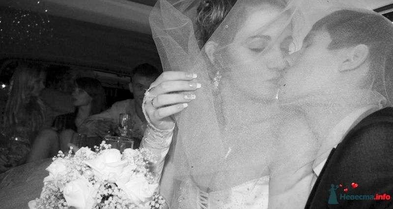 Свадьба Алины и Саши - фото 340497 Alexandrof-wedding photographer