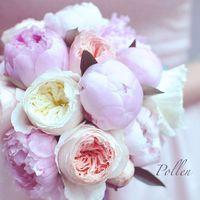 Сладкие шарики пионов и розы Дэвид Остин