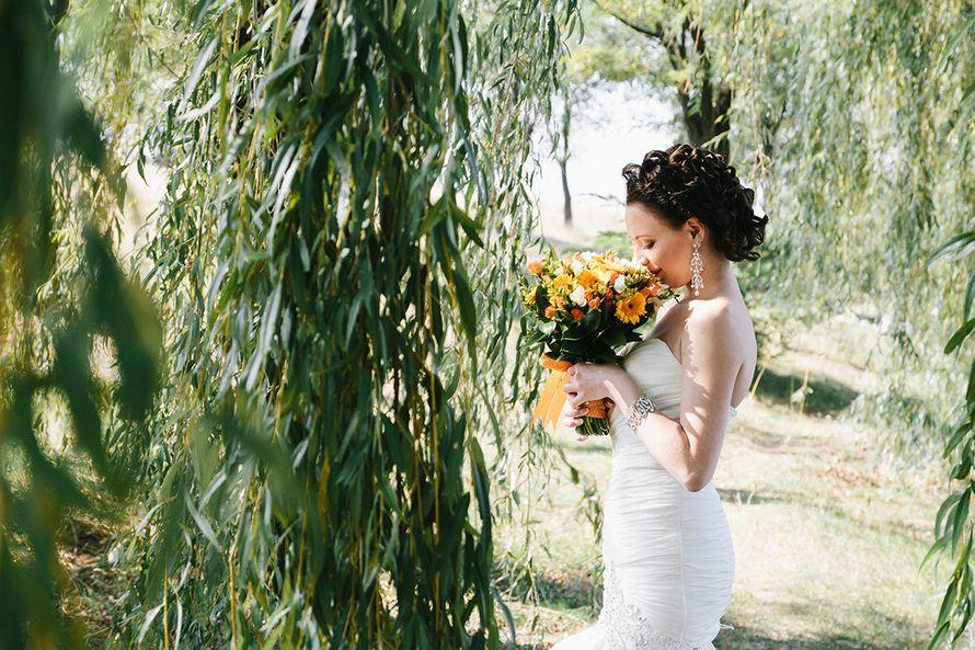 Фото 3793731 в коллекции Свадебное фото - Свадебный фотограф Марина Новикова