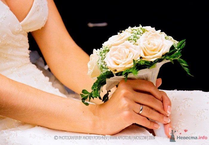 Фото 24302 в коллекции Свадебные фотографии