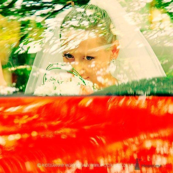 Фото 24305 в коллекции Свадебные фотографии - Невеста01