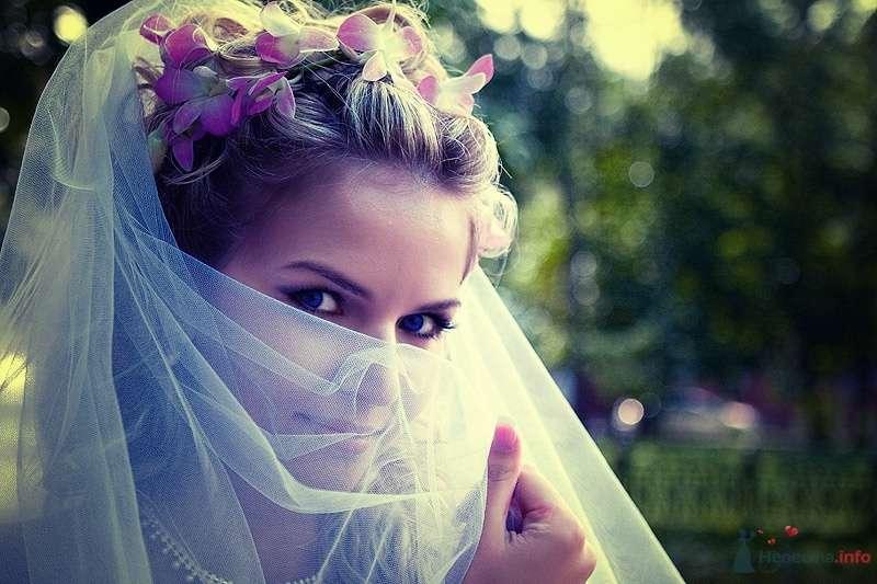 noname - фото 36070 Свадебный фотограф Пантелеев Александр