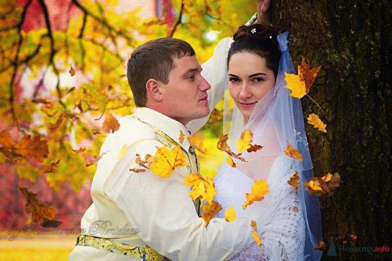 no name - фото 42914 Свадебный фотограф Пантелеев Александр