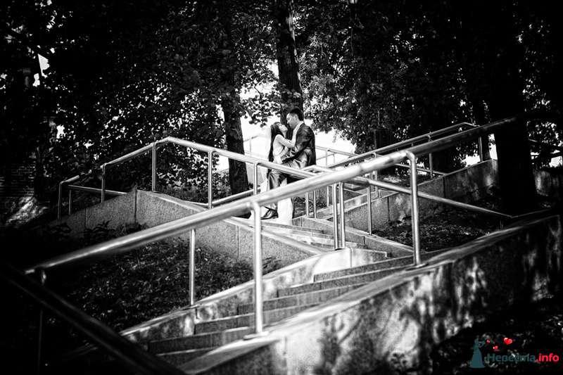 --- - фото 136808 Свадебный фотограф Пантелеев Александр