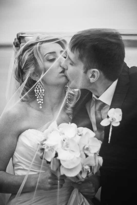 фотографии, подружки невесты, фото, фотограф, свадебное, салон,зеркало, красота, wedding, свадьба, платье, туфли, макияж, девичник, сборы, утро невесты, фуршет, липецк, фата, вуаль - фото 4070201 Свадебный фотограф Анжелика Лосихина