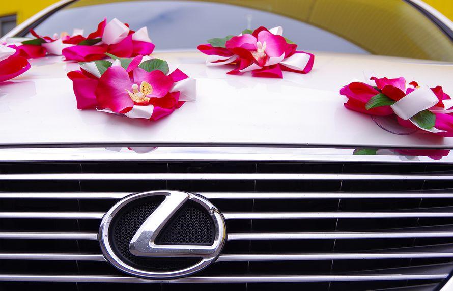 Фото 4474521 в коллекции Автомобили - Авто в аренду bi-bip