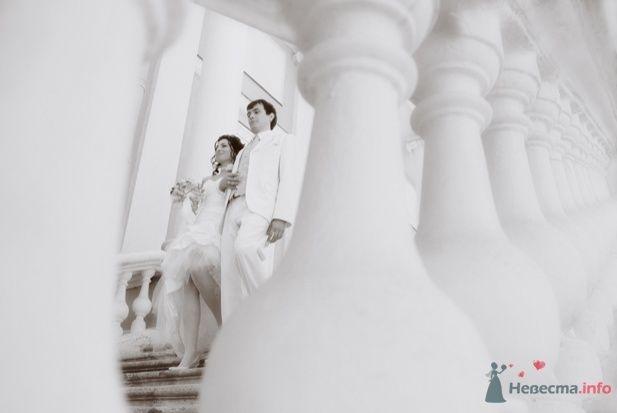 Фото 33108 в коллекции Свадебное...