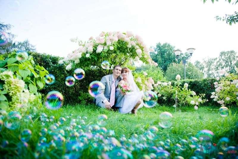 Фотосессия жениха и невесты на природе под кустом белой гортензии, на фоне голубых мыльных пузырей - фото 55055 Lexandra