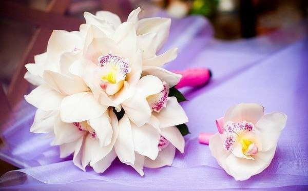 Фото 4600579 в коллекции Свадебные букеты и оформление - Цветочная империя