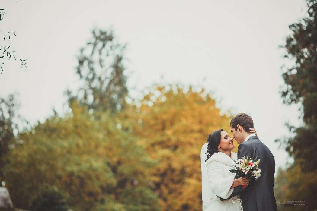 Фото 1398867 в коллекции Свадьбы 2013 - Фотограф Владимир Донченко