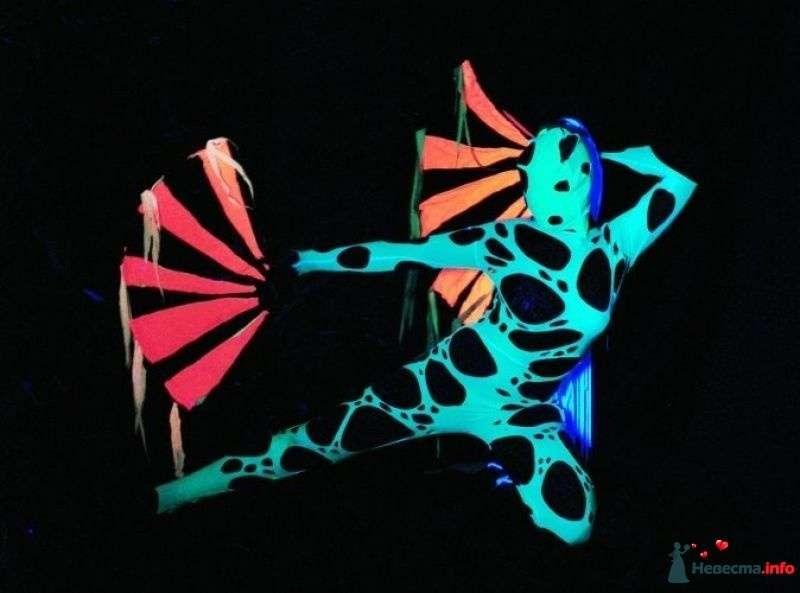 """Фото 344756 в коллекции Элекро и неон шоу - Огненное шоу - Студия """"Найтфолл"""""""