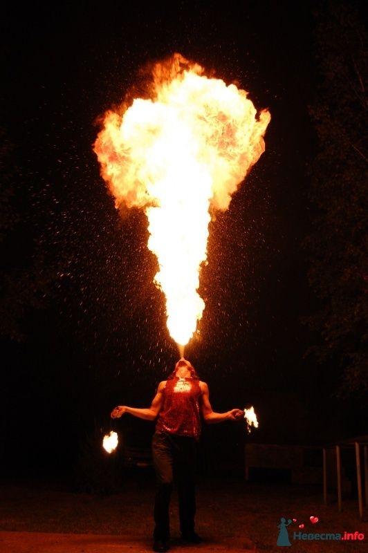 """Огненное (файр, fire) шоу в Хабаровске! Студия """"Найтфолл"""" - фото 408347 Огненное шоу - Студия """"Найтфолл"""""""