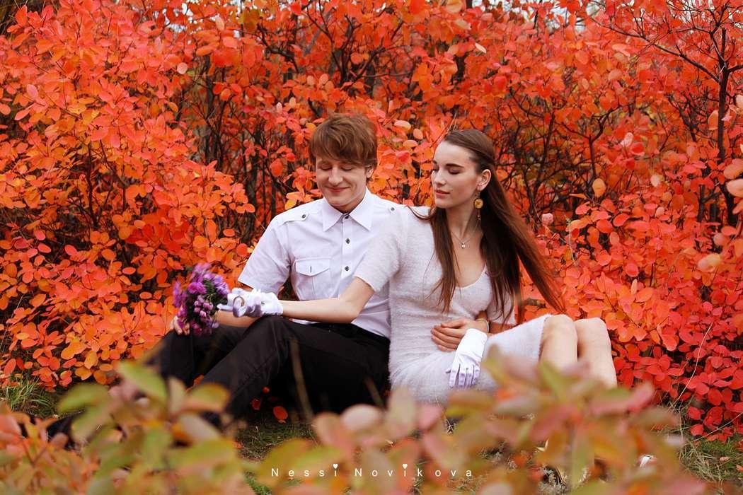 Яркая осень - фото 5055385 Фотограф Nessi Novaya