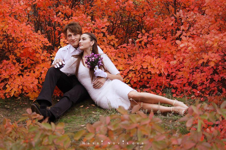 Яркая осень - фото 5055389 Фотограф Nessi Novaya