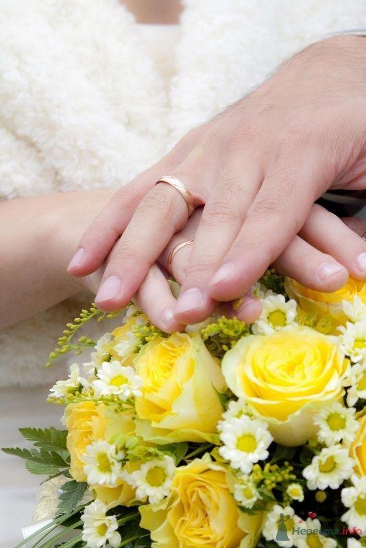 Фото 46378 в коллекции наша свадьба - женька87
