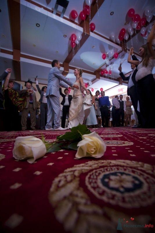 Фото 52233 в коллекции наша свадьба - женька87