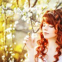 весна, девушка, потрет, цветущая вишня, закат солнца, теплое фото