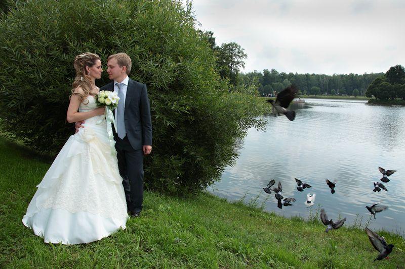 Фото 5247411 в коллекции Свадебная фотосъемка - Фотограф Самуил Гурарий