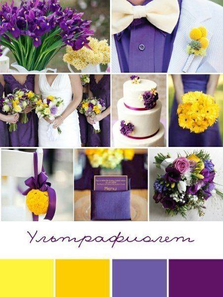 Фото 5377023 в коллекции Свадебные палитры - Агентство SV-Show