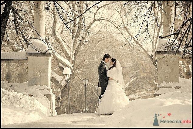 Жених и невеста стоят, прислонившись друг к другу, в заснеженном парке - фото 55156 Mary_yoko