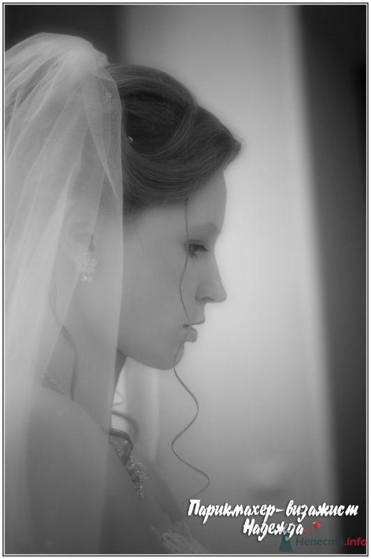 Фото 26394 в коллекции это просто моя работа - Парикмахер-визажист Надежда Данюшкина