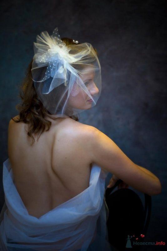 Фото 32308 в коллекции это мое хобби-фотография - Парикмахер-визажист Надежда Данюшкина