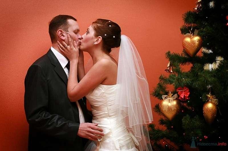 Жених и невеста целуются возле новогодней ёлки - фото 65580 Фотограф Настя Лахина