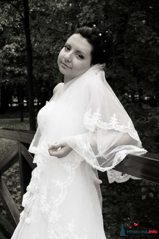 Фото 127911 в коллекции Елена и Александр - Фотограф Настя Лахина