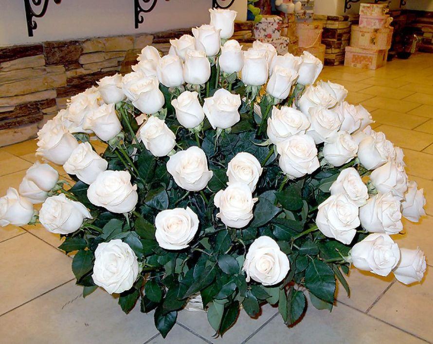 миллионы белых роз картинки тому же