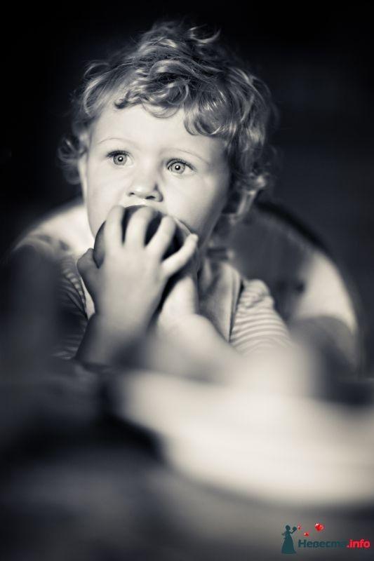 Фото 364357 в коллекции Дети - Фотограф Сергей Семиков