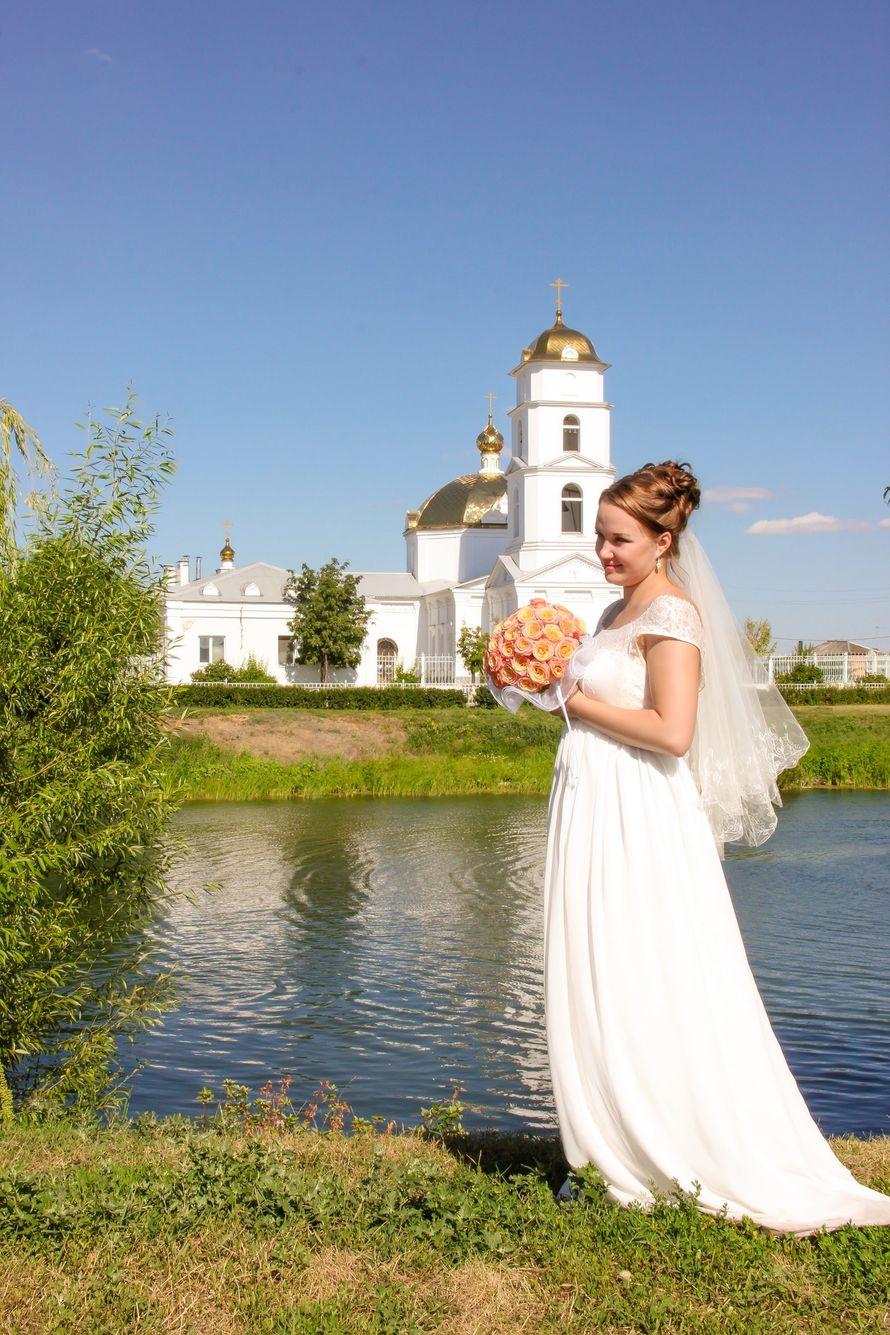 Фото 11807950 в коллекции Портфолио - Фотограф Светлана Языкова