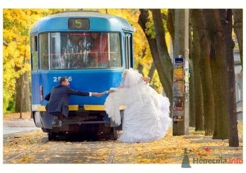 Фото 14124 в коллекции Свадебная фотография - leshechka