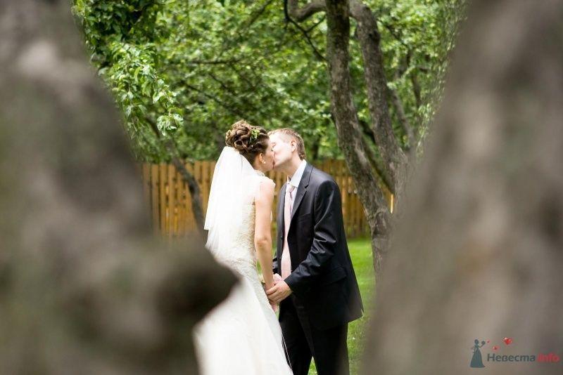Фото 34343 в коллекции Моя свадьба - leshechka