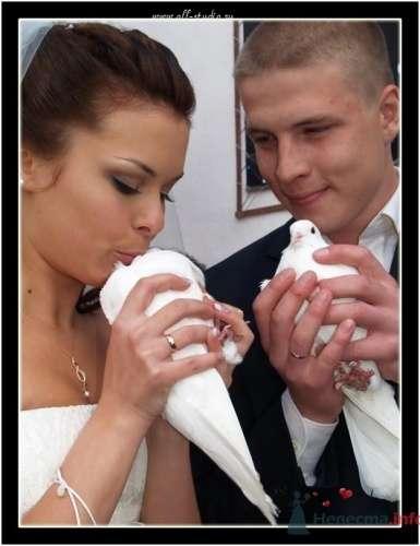 Фотография жениха и невесты с белыми голубями. - фото 652 Студия фото и видеосъемки Aliya Pavrose