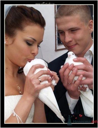 Фотография жениха и невесты с белыми голубями.