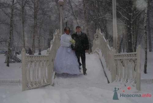 Фото 9029 в коллекции Свадьба - Victoria