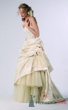 Свадебное платье Domo Adami от ПЛЮМАЖ - фото 1154 Плюмаж - бутик выходного платья и костюма